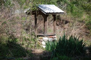 Old Well At Campbell's Covered Bridge!