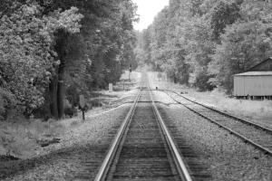 Tracks Through Greer!